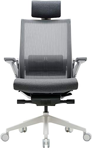 SIDIZ T80 Highly Adjustable Ergonomic Office Chair
