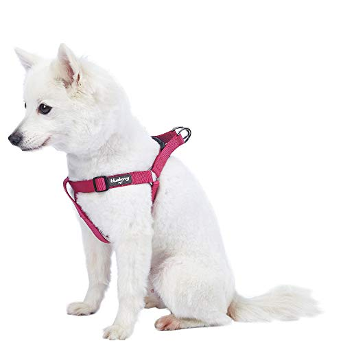 Blueberry Pet Essentials 19 Colors Step-in Classic Dog Harness, Chest Girth 16.5' - 21.5', Very Berry, Small, Adjustable Harnesses for Dogs