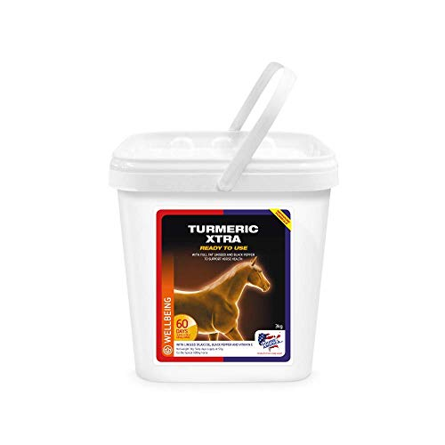 Equine America Turmeric Xtra | Premium Ready To Use Horse & Pony Supplement | Support For Joints & Mobility | 3 Kg