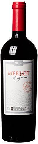 Miolo Merlot Terroir Brasilien Wein 2012, 1er Pack (1 x 750 ml)