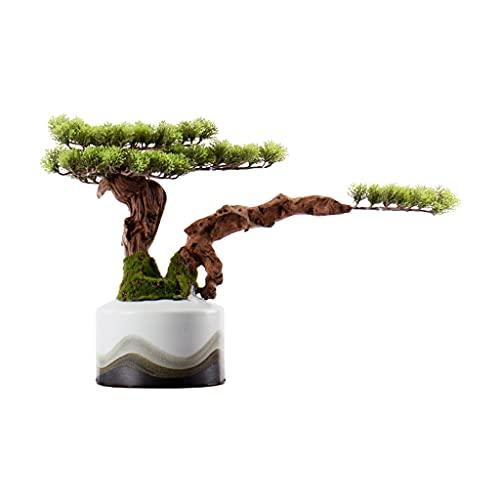 Xu Yuan Jia-Shop Bonsai Decorative Bonsáis Artificial Blonsai Bienvenido Pino Árbol Sala de Estar Decoración Fake Tree Potted Plant Silicone Conifer Blanco Cerámica Flor Pot Decoración Bonsai Tree