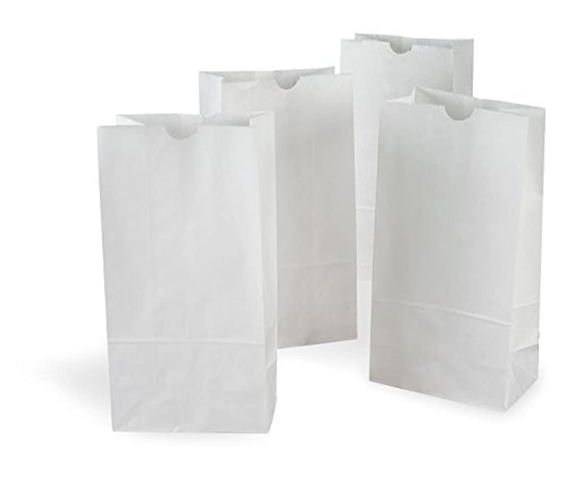 4 Pound White Paper Bag - Pack Of 500 BagsGreat for Crafts, Lunch Bags, Party Bags, Puppets, Coloring, Envelopes and MUCH MORE Variety of Sizes Available (5