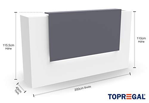 Empfangstheke Empfangstresen, B-Ware, Weiss-Grau, 200cm x 40 cm Rezeption Empfang Verkaufstheke Bürotheke Messetheke