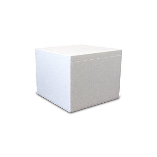 Styroporbox/Thermobox - 48,0 Liter - 48,0 x 48,0 x 38,0 cm/Wandstärke 4 cm - Styrobox