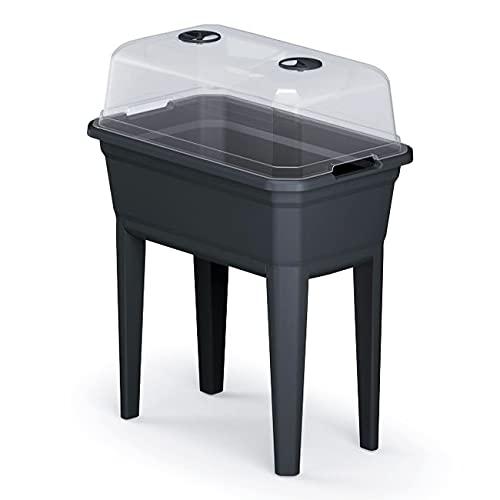 Prosperplast Fioriera alta con copertura Respana Planter Ecoline in plastica, colore antracite, 59,6 x 36,8 x 75,3 cm (lunghezza x larghezza x altezza).
