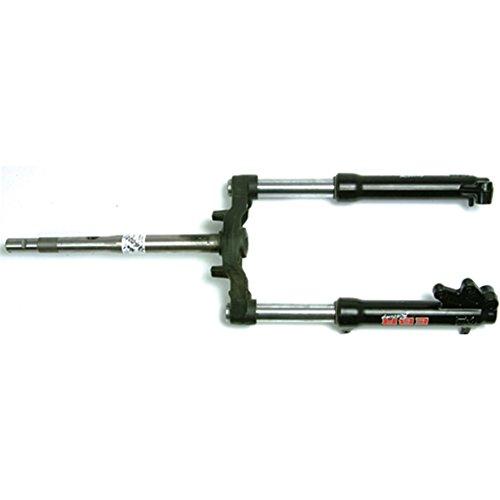 Gabel komplett Hydraulisch EBR Gabel komplett hydraulisch F011290133 Motorrad