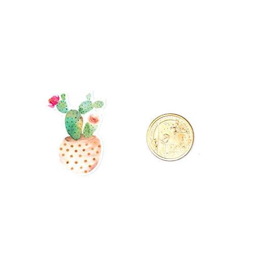 June Trendy Cute Cactus and Succulent Plants Waterproof Stickers for DIY Scrapbooking Bullet Journaling Planners Craft… |
