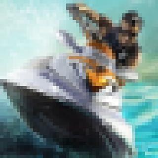 摩托艇锦标赛