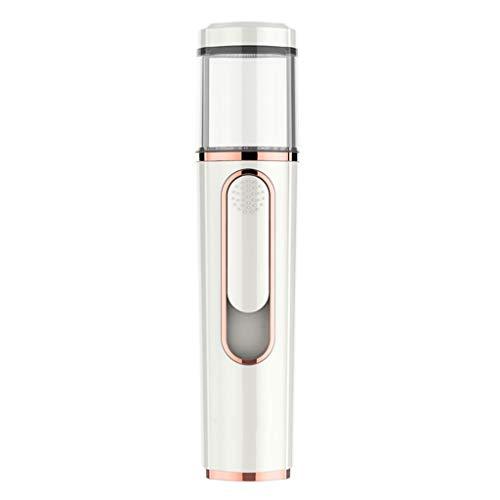 Facial Steamer Nano Froid Vaporiser Hydratante Femme Professionnelle HYDRATANTE Instrument de beauté à Vapeur portatif 2 Couleurs en Option (Blanc, Rouge) (Color : B)