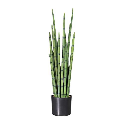 Pflanzen Kölle Kunstpflanze Sanseveria cylindrica im Kunststofftopf, 21 Blattstiele, ca. 100 cm