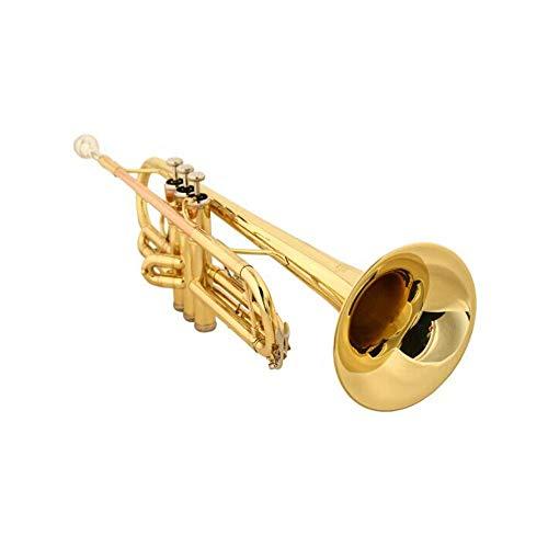 Trompete, B Flat Tune Instrument Anfänger Professionelle Spiele Phosphorus Blasrohr Upgrade-Test-Version Gold-Trompete perfektes Geschenk (Color : Gold)