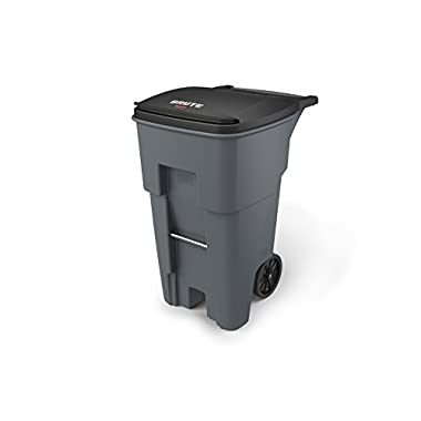 Rubbermaid Commercial Products BRUTE Rollout Waste/Utility Container, 65-gallon, Gray (FG9W2100GRAY)