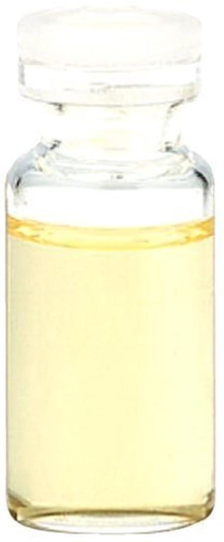 該当する罰する慢性的生活の木 フランキンセンス(オリバナム/乳香) 100ml