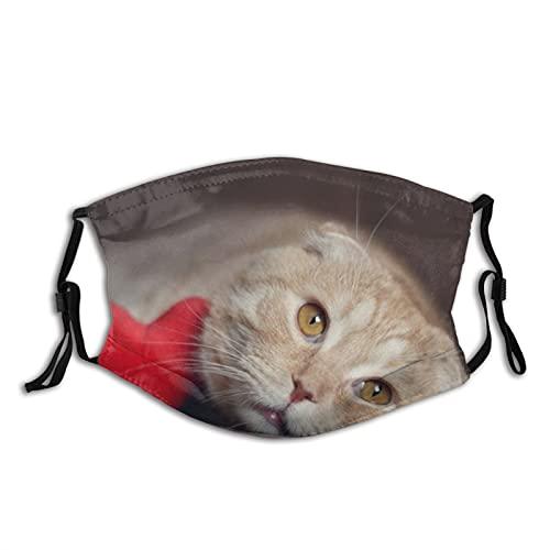 Cat-Cute Animals-Cats Bandana Unisex lavable boca reutilizable con 2 filtros