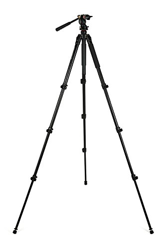 Celestron 82052 Tripod, Regal Premium (Black)