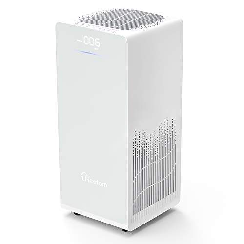 Hestom Air Purifier for Home Large Room, H13 True HEPA Air Cleaner,1200 Sq Ft Coverage, Perfect for Pets, Low Noise, Auto Mode, 3 Fans Setting, Negative Ion, White