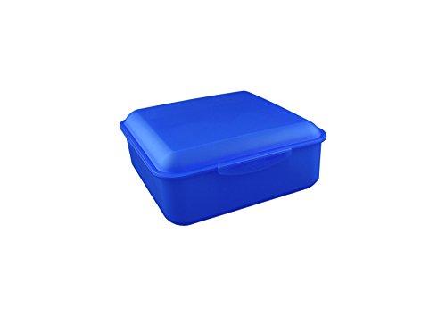 Buchsteiner Klickbox QUADRATISCH (blau)