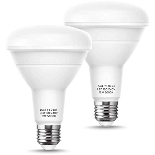 Techgomade Dusk to Dawn Light Bulb Outdoor, Br30 Led Bulbs, 12W (75W Equivalent), 950Lm Daylight 5000K, Auto On/Off E26 Base, Indoor/Outdoor Flood Light for Recessed Can, Porch, Garage, 2 Pack