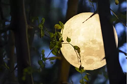 BRIGHTWORLD Moon Lamp Moon for Women with touch control and USB Rechargeable system