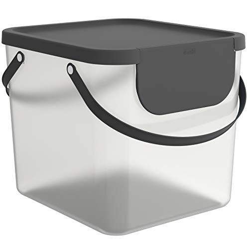 Rotho Albula Aufbewahrungsbox Deckel, Kunststoff (PP recycelt), transparent/anthrazit, 40l, (39,8 x 35,8 x 33,9 cm)