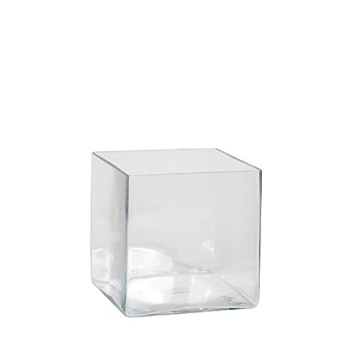 Lage vaas/accubak transparant glas vierkant 20 cm Transparant