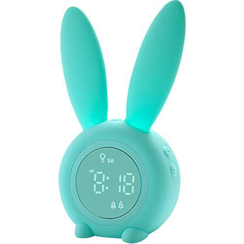 Anmones Alarm Clock