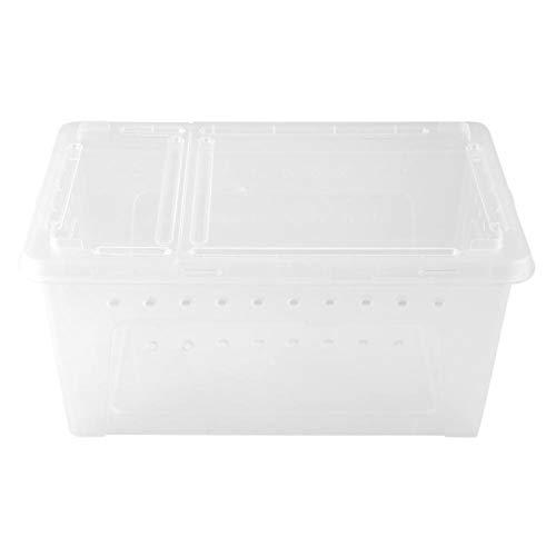 HEEPDD - Caja de Cultivo para Reptiles, plástico Transparente, con ventilación, contenedor de Almacenamiento para Tortuga, Lagarto, araña, escorpión