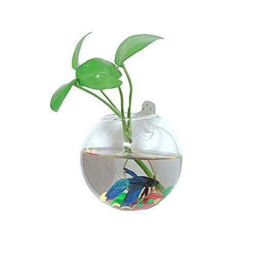 Hosaire 1X Jarrones de Pared Colgante Florero de Cristal Botella para Decoraciones Flores Plantas Decor Home Baño Regalo Ideal Boda Paquete Size 10CM