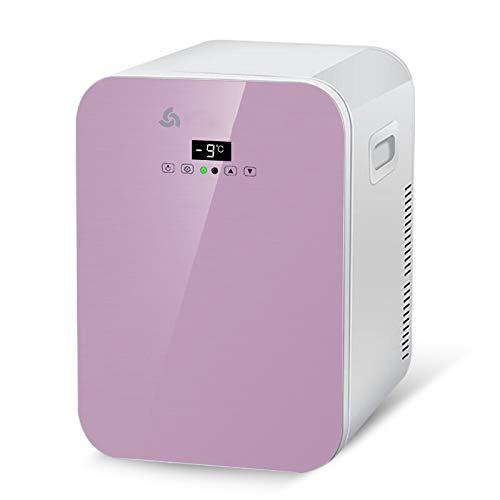 wangt kleine wagen koelkast 20 l capaciteit mini-koelkast 12V / 220-240V DC / AC Dual Core Durable koelbox