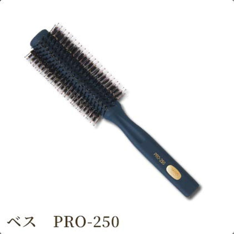 菊雨の疾患ベス工業 Vess サロンロールブラシ Φ48 PRO-250
