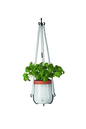Leonardo Serra Pflanzen-Topf, Hänge-Ampel in Weiß, Blumen-Ampel mit Einsatz und Hängevorrichtung, 3er Set, 240 mm hoch, 057782