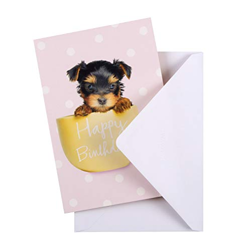 General Birthday Card from Hallmark - Cute Photographic Design