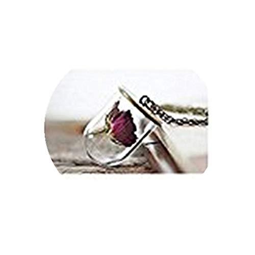 Gedroogde bloem ketting Glas flacon ketting Echte roos ketting Terrarium ketting Fles hanger Vitreous glas sieraden