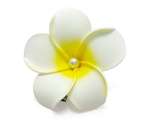 DreamLily Women's Fashion 3 Pcs Hawaiian White Plumeria Flower Foam Hair Clip Balaclavas for Beach (1#)