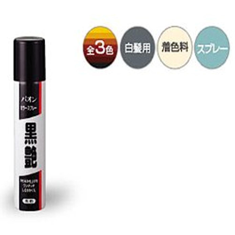 【シュワルツコフ ヘンケル】パオンカラースプレー黒艶 黒色 85g ×10個セット
