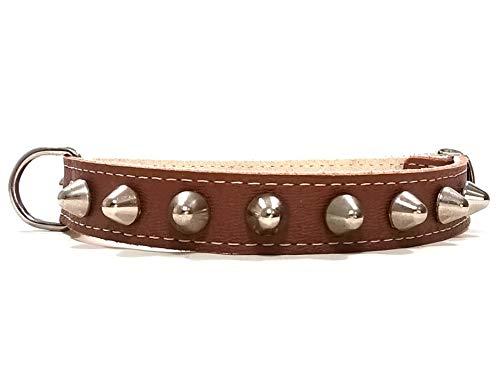Superpipapo Hunde-Halsband, Handmade Braun Leder Design mit Nieten, Robuste Ausgefallene Qualität für Kleine und Mittelgroße Hunde, 45 cm S-Wide: Halsumfang 30-35 cm, Breit 28mm