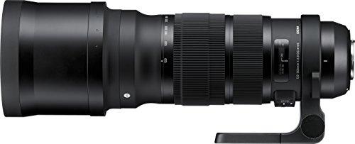 Sigma 137955 - Objetivo para Nikon (Distancia Focal 120-300mm, Apertura f/2.8-22, estabilizador) Color Negro