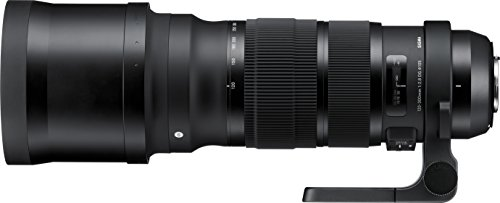 Sigma 120-300mm F2.8 Sports DG APO OS HSM Lens for...