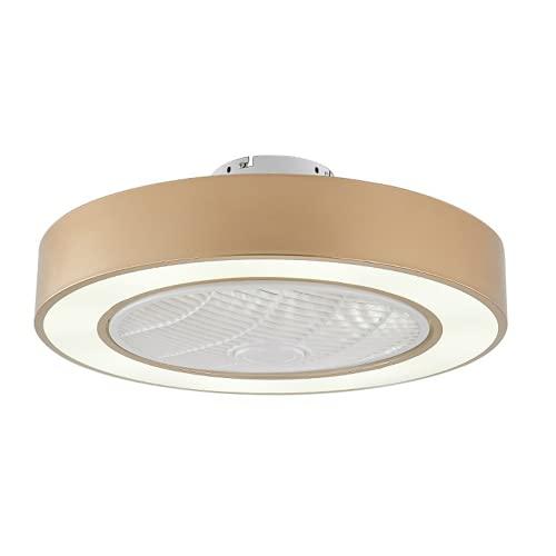 Ventilador de techo con iluminación, LED 220 V, con mando a distancia, luz de ventilador, 36 W, regulable y velocidad del viento, lámpara de techo para salón y dormitorio (dorado)