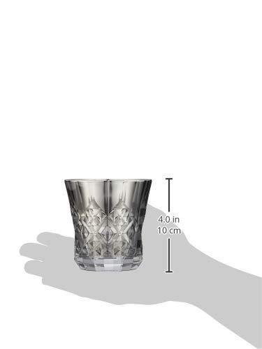 PROGRESSロックグラスチタンミラー日本製ウィスキーワイン焼酎ハイボールお酒がまろやかにクロス付Silver(Rex)