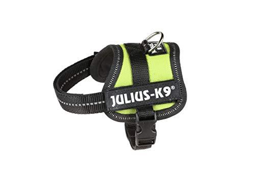 Julius-K9 Pettorina K9, Verde Kiwi, 3XS / Baby 1