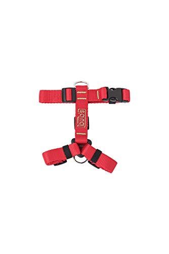 bub's Not Pull - arnés para Perro pequeño Sistema Anti tirón (Comprobar tamaño: Cuello 24 a 42 cm Pecho 31 a 49 cm) Color Rojo