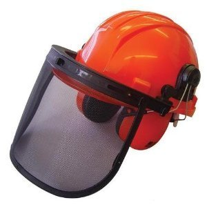 Chainsaw Forestry Safety Helmet with Ear Defenders, By ISE
