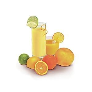 Moulinex PC120870 Presse Agrumes Électrique Ultra Compact 25W Jus Orange Citron Pamplemousse Capacité 0,45L Noir