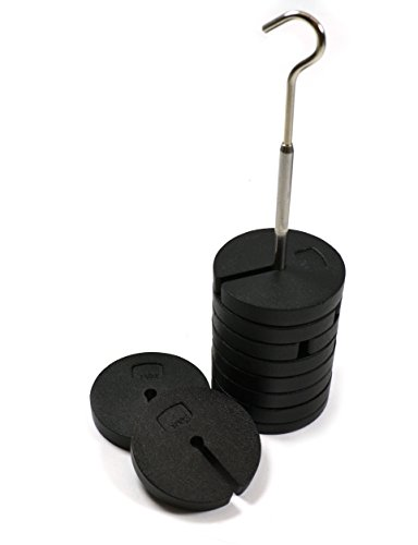Eisco Labs Slotted Masses Set- Zinc Casted, Set of 9 Weights, one Hanger Each of 100g, Total 1 kg