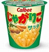 カルビー じゃがりこ サラダ 12個×2箱 (24個分)