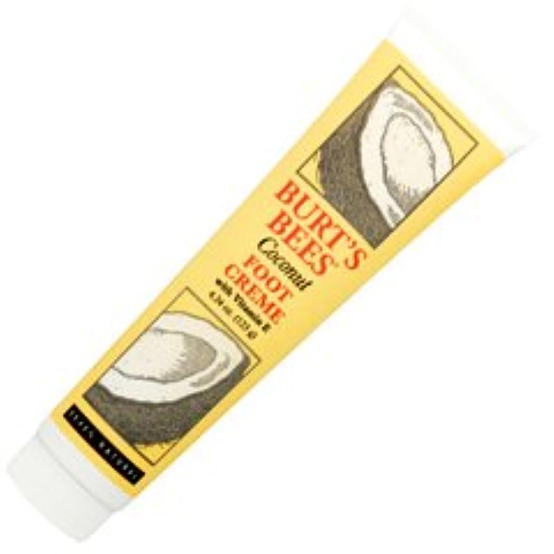 部族ドレス丘バーツビーズ(Burt's Bees) ココナッツ フットクリーム 123ml [海外直送品][並行輸入品]