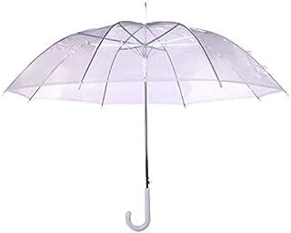 Women Kids Parasol Rain Umbrella Semi-Automatic Female Umbrellas Transparent Long-Handle Rain Umbrella Ultra Light (Color : Clear)