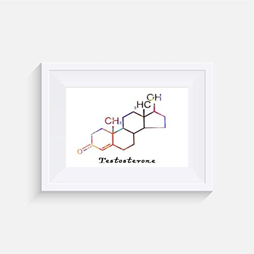 Molekül Testosteron Inspirier - Drucken - Poster - Aquarell - Wandkunst- verschiedene Größen(Rahmen Nicht Inbegriffen)