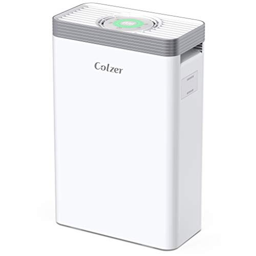 COLZER Air Purifier with H13 True HEPA Air Filter, 4-Stage Filter Air Purifier for Bedroom, for Spaces Up to 550 Sq Ft, Perfect for Home/Office with Composite Filter